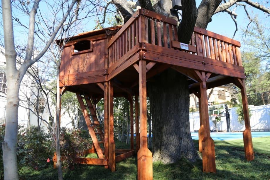 Fort Stockton with tree platform