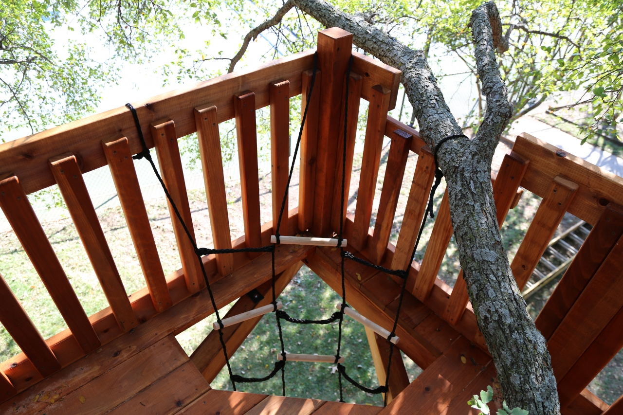 Tree Deck with rope ladder access